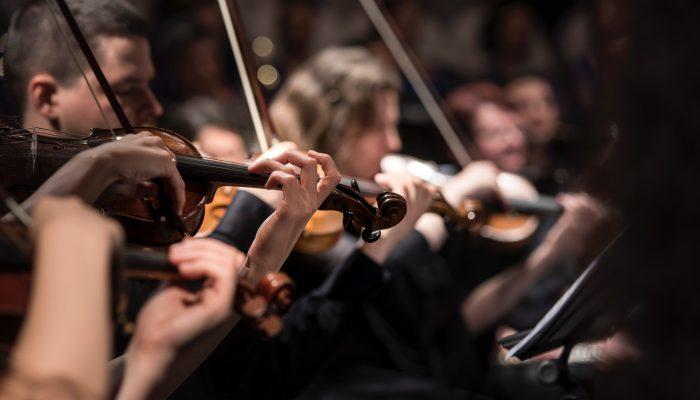 orchestra violin1